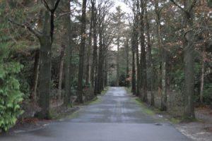 Crematorium Den en Rust Bilthoven (boslaan)